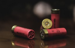 shotgun shells and school shooting