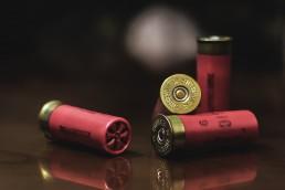 shotgun shells and school shooting
